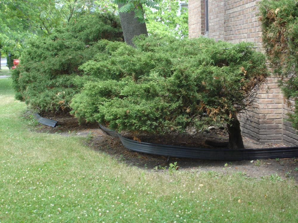 Landscape Edging Ideas on Suburban Garden Design Ideas