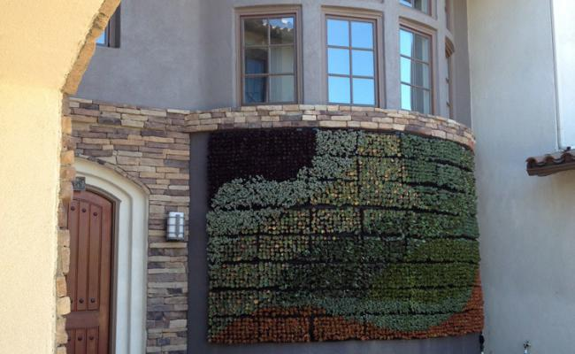 living-wall-stone-edg008