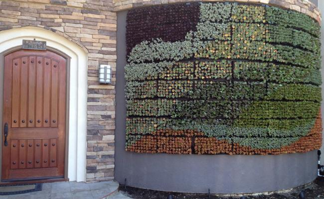 living-wall-stone-edg009