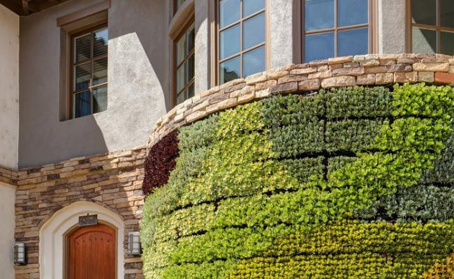 living-wall-stone-edg011