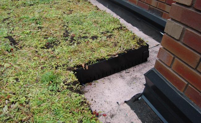 rooftop-garden027