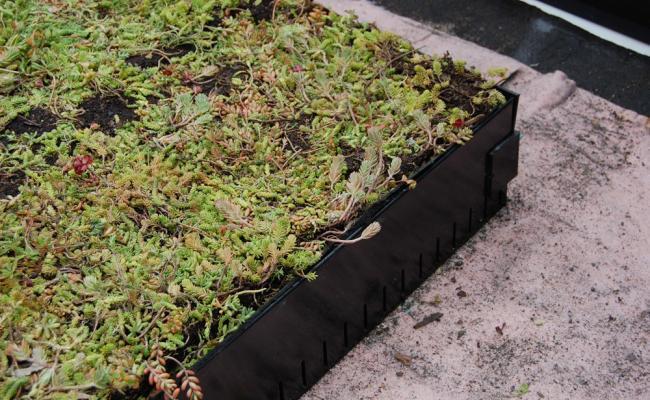 rooftop-garden031