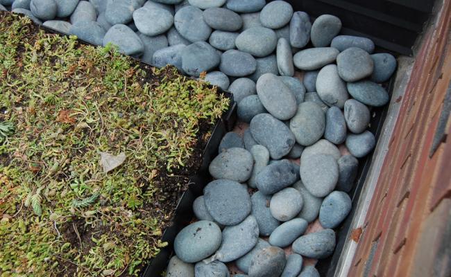 rooftop-garden033