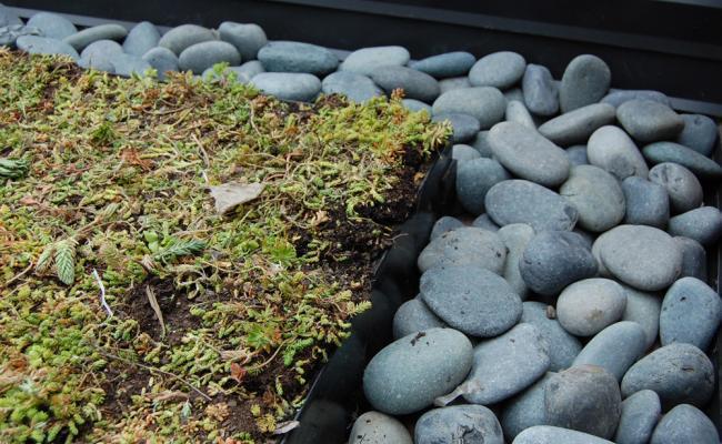 rooftop-garden034
