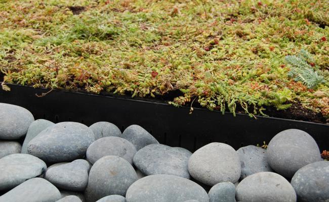 rooftop-garden035